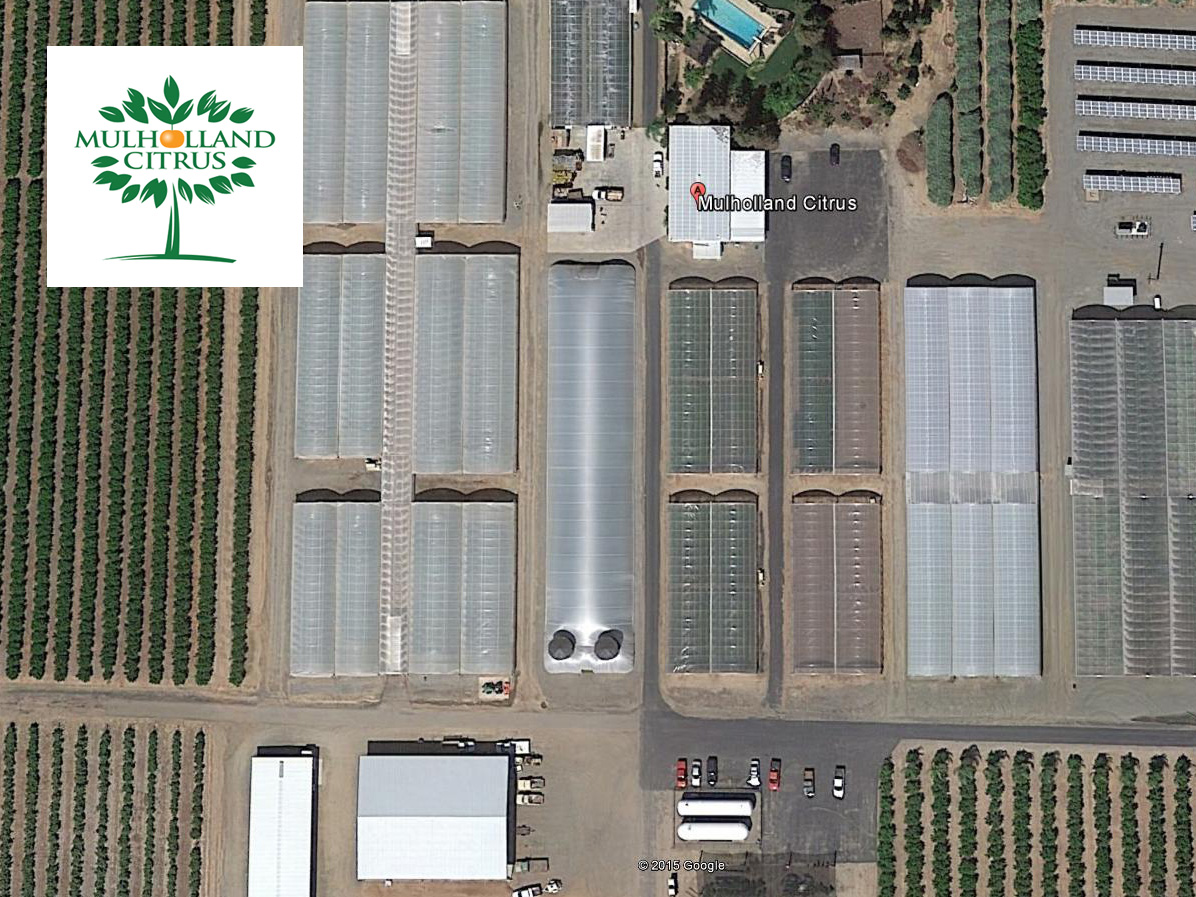 Mulholland Citrus Aerial View of Airstream Greenhouse