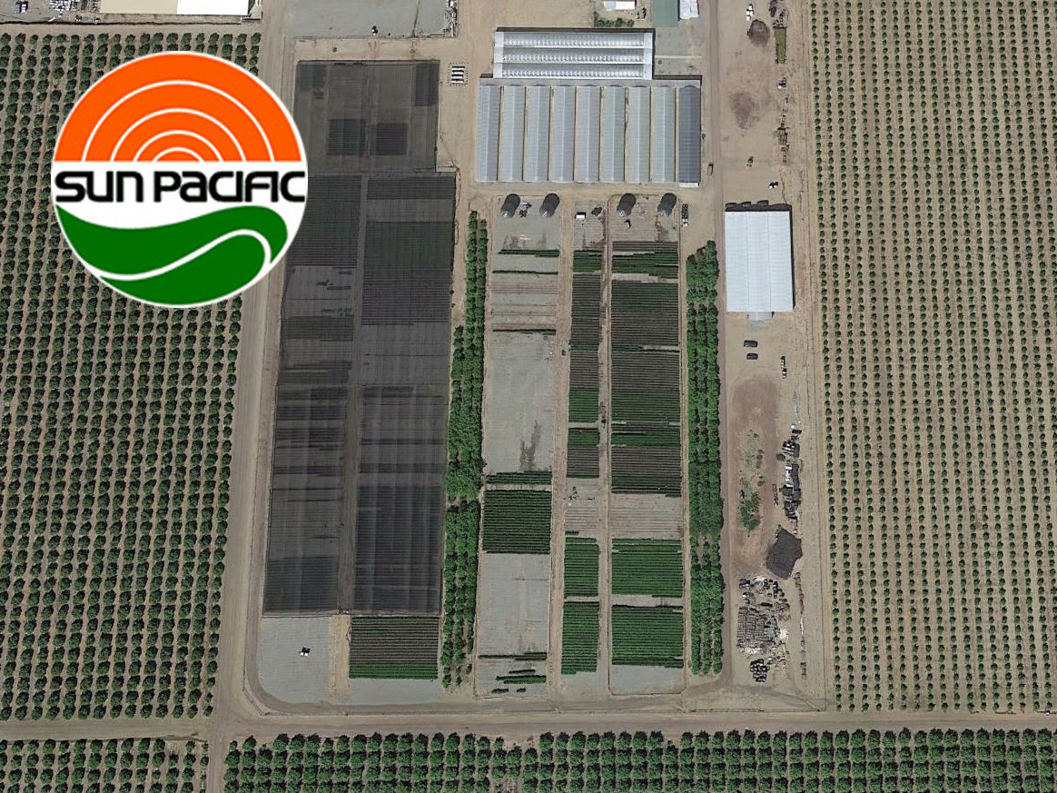 Sun Pacific Nursery Airstream Innovations Largest Air Supported Structure in USA